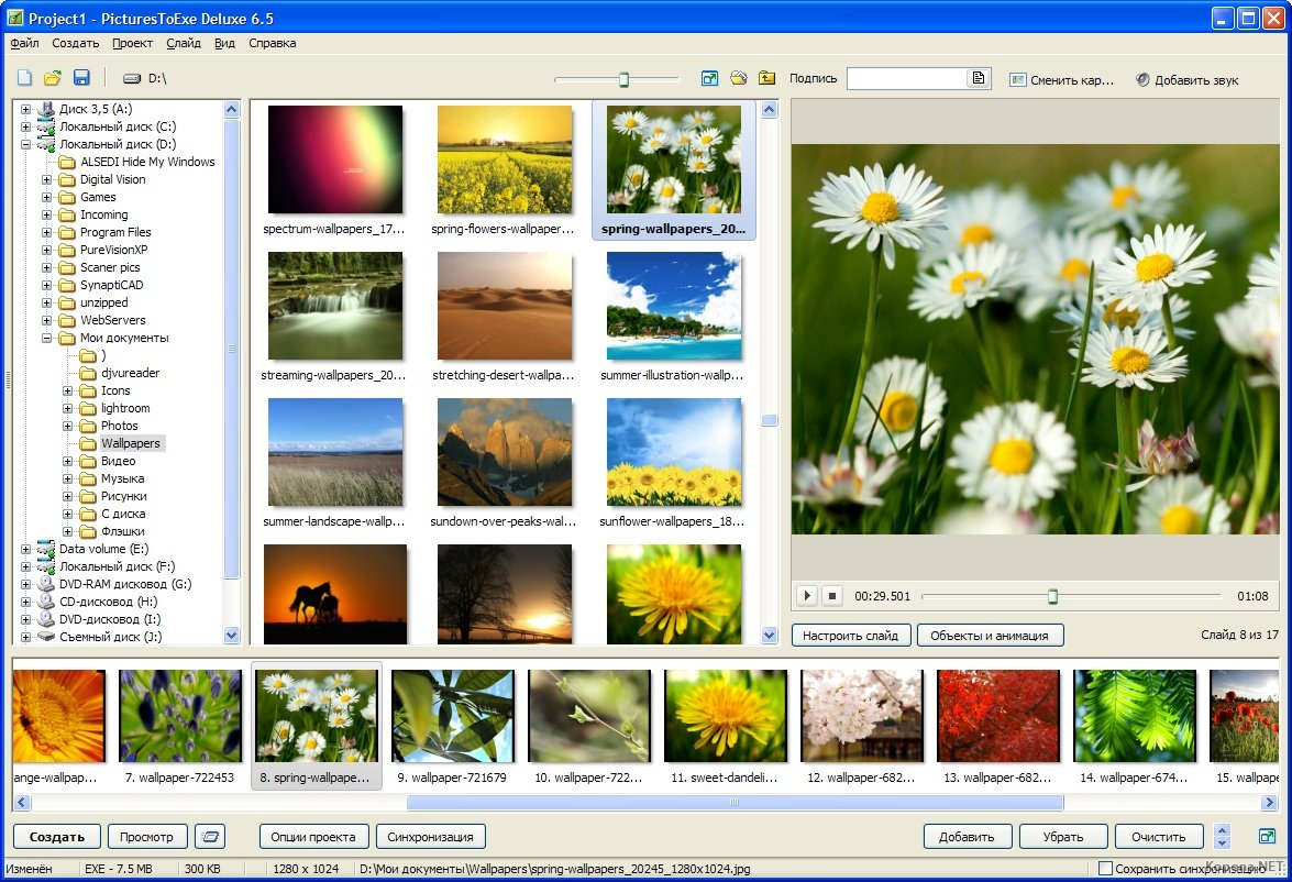 PicturesToExe Deluxe 8.0.17 Final Version (1)